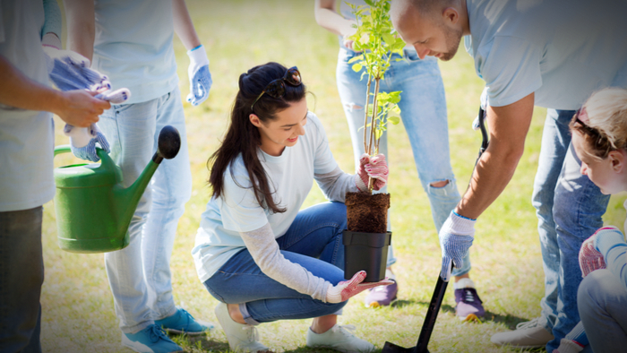 Driving Social Sustainability through Volunteerism