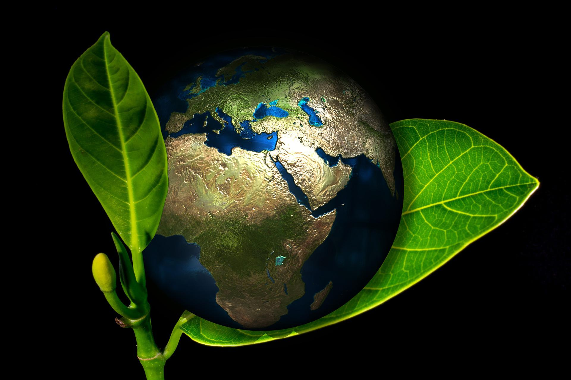 an essay on the planet earth Our planet is in great danger for the last one hundred or so years, the people of earth have wasted and misused the natural resources of earth.