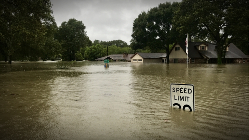 Philanthropy's Role in the Wake of Hurricane Harvey
